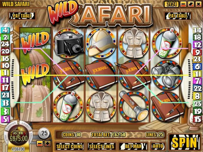 a $875 jackpot triggered by multiple winning paylines by Free Slots 247