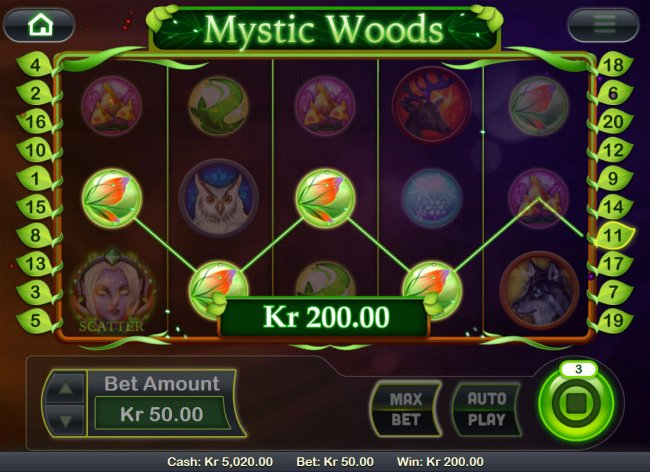 Images of Mystic Woods