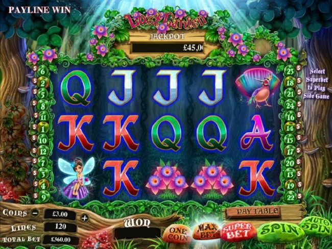 Free Slots 247 - main game board featuring five reels and 24 paylines