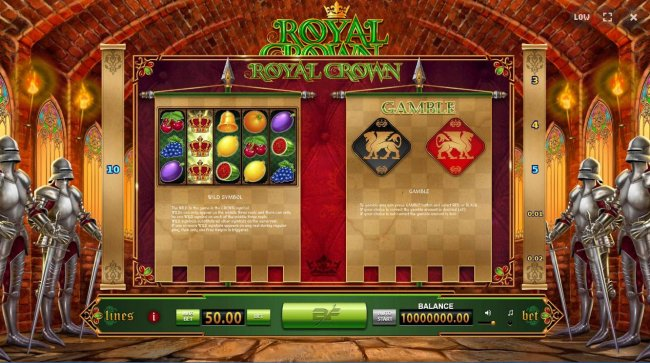 Wild Symbol and Gamble Feature Rules by Free Slots 247