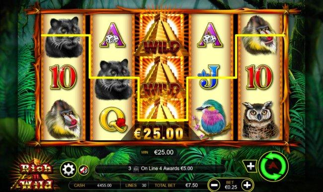 Rich n Wild by Free Slots 247