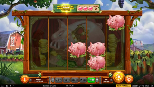 Land more pigs to win big by Free Slots 247