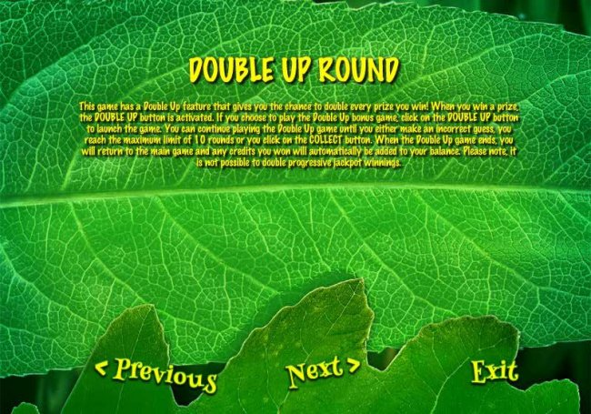 DOUBLE  UP ROUND - This game has a double up fueature that gives you a chance to double every prize you win. by Free Slots 247