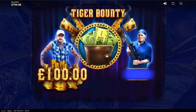 Bonus Feature by Free Slots 247