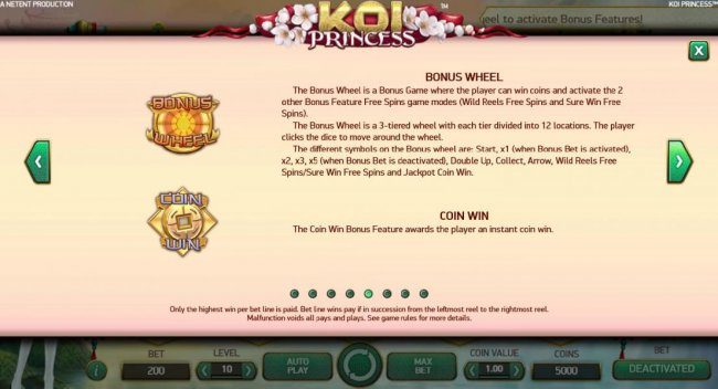 Bonus Wheel and Coin Win game rules - Free Slots 247