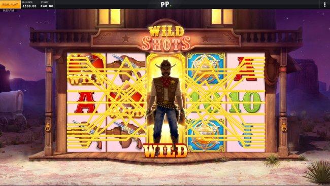 Wild Sheriff screenshot