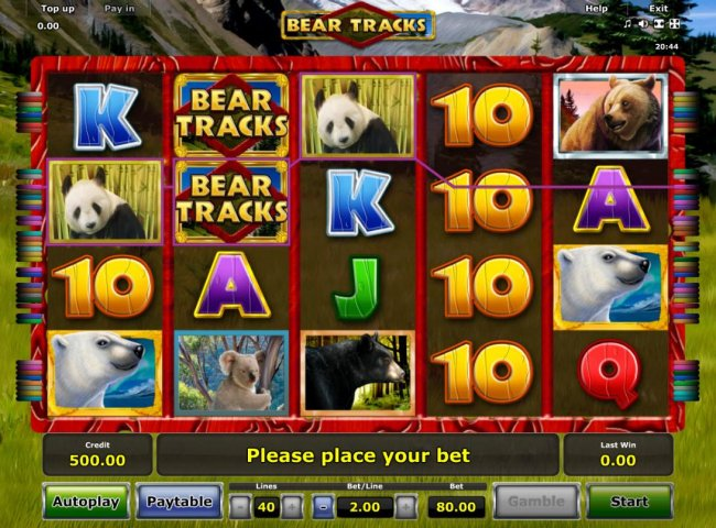 Free Slots 247 - A bear adventure themed main game board featuring five reels and 40 paylines with a $80,000 max payout