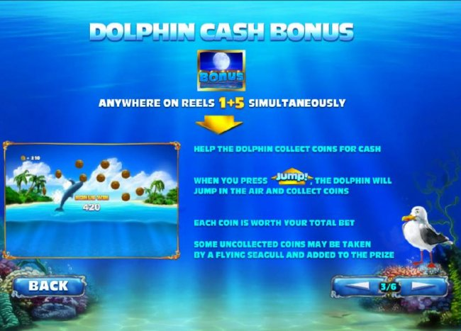Free Slots 247 image of Dolphin Cash