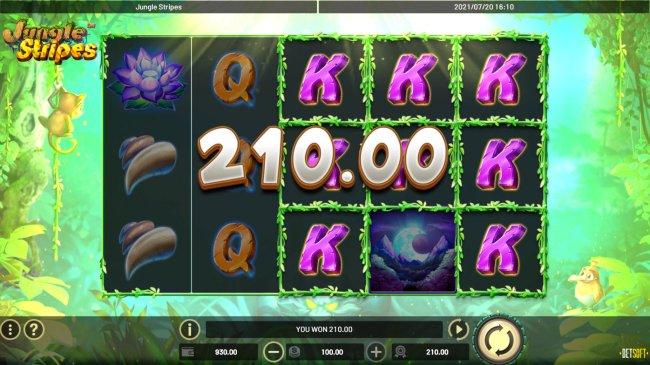Free Slots 247 image of Jungle Stripes