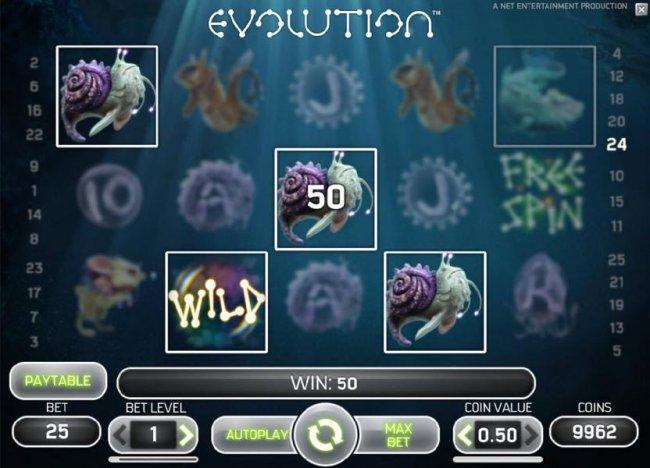 Images of Evolution