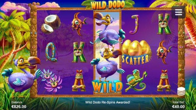 Images of Wild Dodo