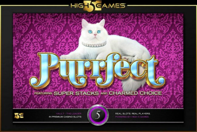 Images of Purrfect