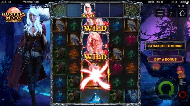 Free Slots 247 - Wild Feature Triggered