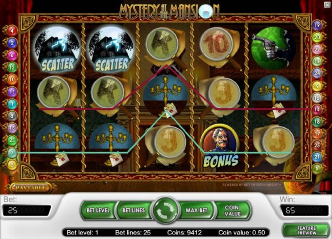 multiple winning paylines triggers a 65 coin payout by Free Slots 247