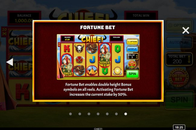 Fortune Bet by Free Slots 247