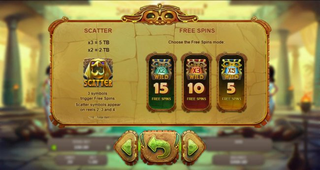 Scatter Symbol Pays and Rules. Free Spins Rules by Free Slots 247