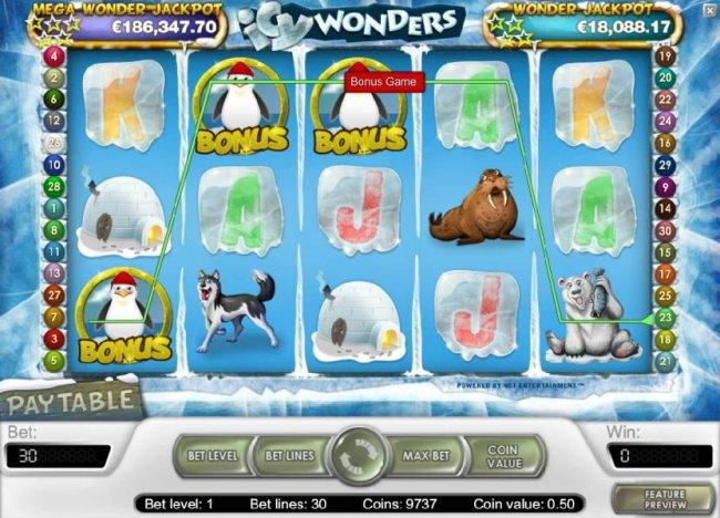 Icy Wonders screenshot