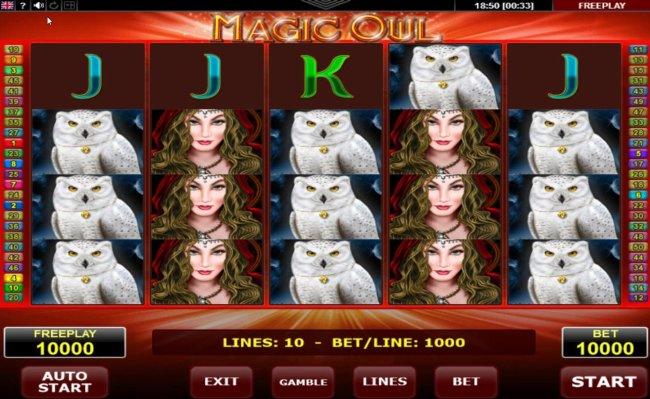 Magic Owl screenshot