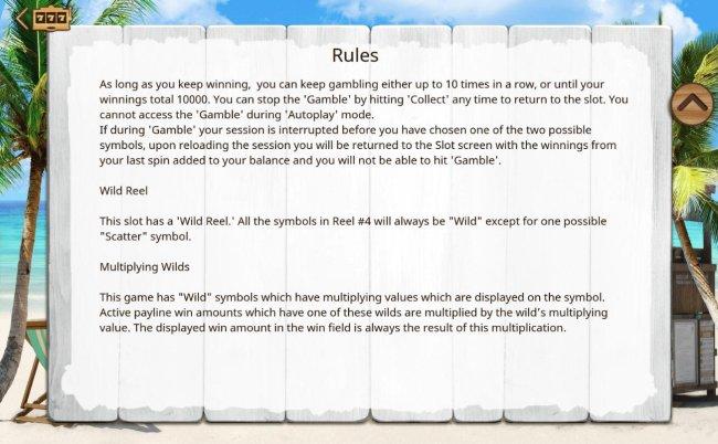 Wild Symbol Rules - Free Slots 247