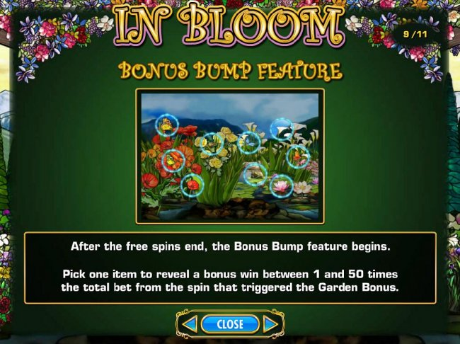 Bonus Bump Feature Game Rules. by Free Slots 247