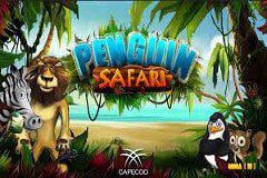 Penguin Safari