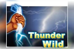 Thunder Wild