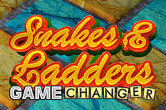 Snakes & Ladders Game Changer