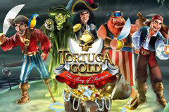 Tortuga Gold the Bay of Fortune